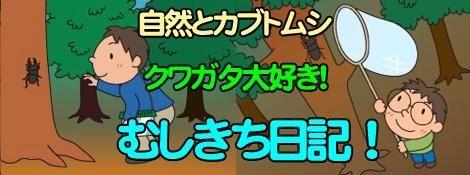 クワガタ工房 虫吉の日記