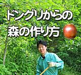 ドングリからクワガタやカブトムシの森を作る