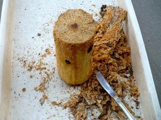 ヒラタクワガタの産卵木の樹皮を剥ぎます