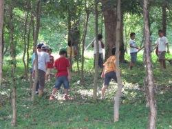 昆虫採集を楽しむ子供達