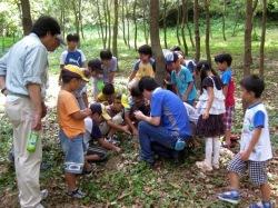 子供達と一緒に昆虫採集!