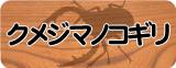 クメジマノコギリ