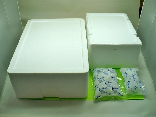 クワガタ工房 虫吉の梱包の一例
