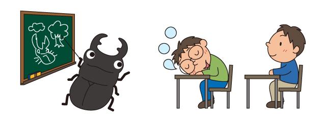 クワガタ成虫飼育の質問のイラスト2