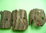 クワガタの隠れ家の樹皮の販売