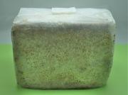 ブナ菌床ブロック