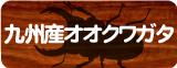 九州産オオクワガタ販売コーナー