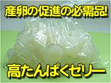 クワガタやオオクワガタの産卵用高タンパク昆虫ゼリー販売